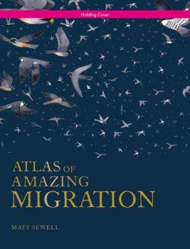 Atlas-of-Amazing-Migration