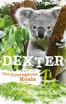 Dextor-The-Courageous-Koala
