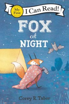 Fox-at-Night