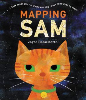 Mapping-Sam