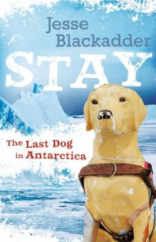 Stay-The-Last-Dog-in-Antarctica