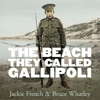 The-Beach-They-Called-Gallipoli