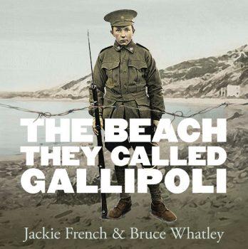 The-Beach-They-Called-Gallipoli